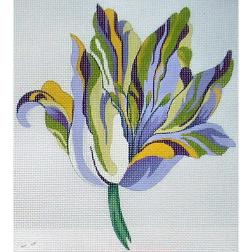 6681 Purple/Yellow Tulip